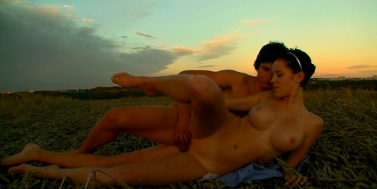 Video sex in a field at sunset